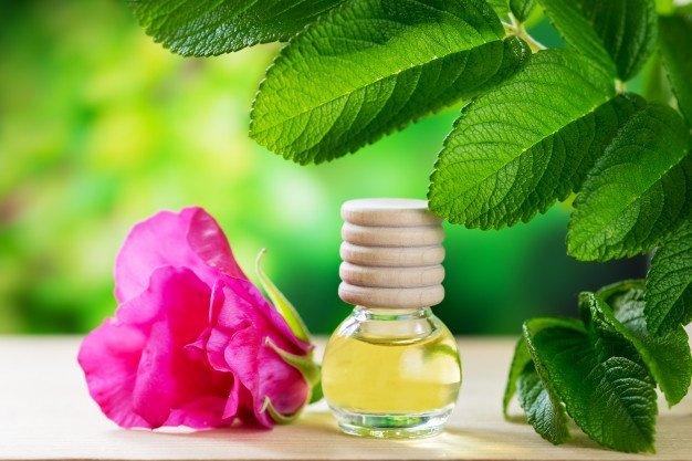 Quels sont les bienfaits de l'huile de rose musquée ?